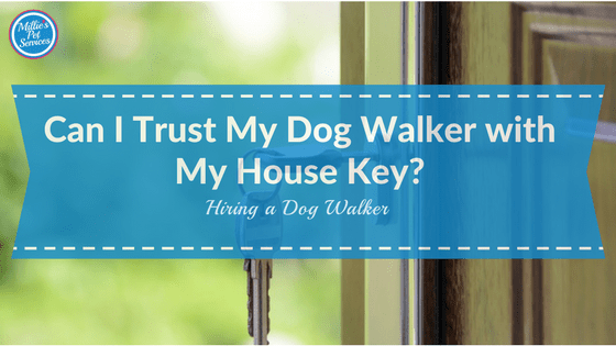 trust my dog walker with my house key front door with key in it