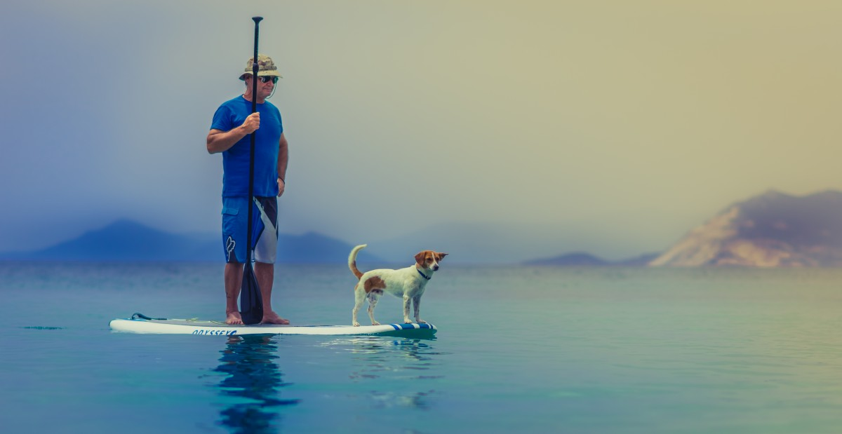 Paddleboarding How to Get Fit With your Dog