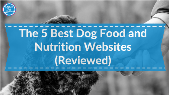 Best Dog Food and Nutrition Websites