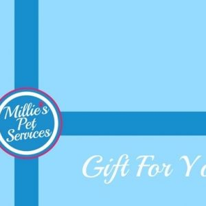 Revised Gift Voucher - Side 1FINAL