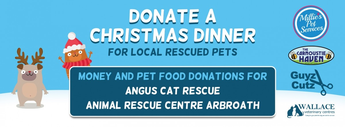 donate A christmas dinner