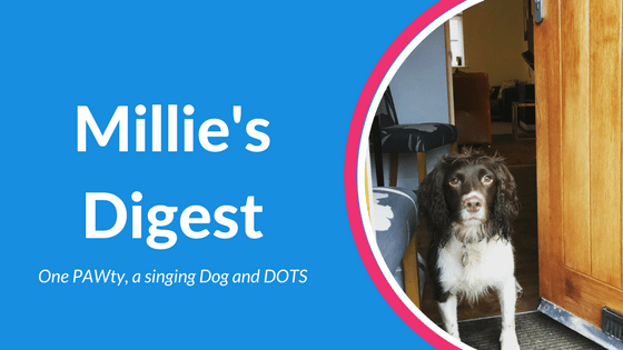 Millie's Digest 21st January