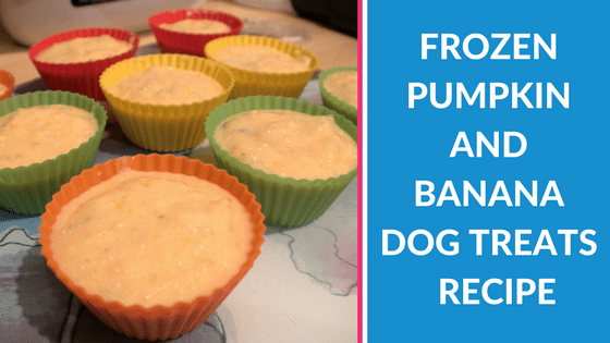 Frozen Pumpkin and Banana Dog Treats Recipe