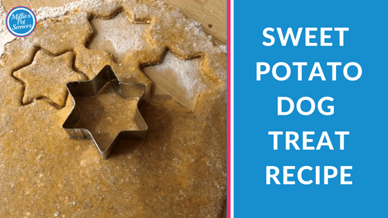 Homemade Dog Treats: Sweet Potato Dog Treat Recipe