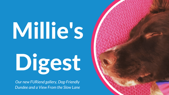 Millie's Digest 11th February