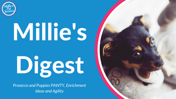 Millie's Digest 5th March