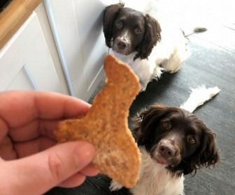 Homemade Dog Treat Recipe Opt in