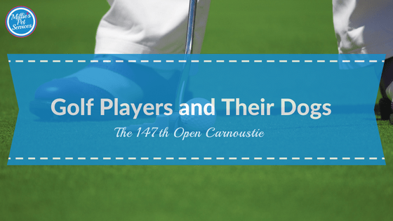 The 147th open Carnoustie: Golf Players and their Dogs