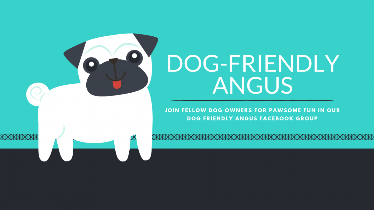 DOG FRIENDLY ANGUS Facebook Group