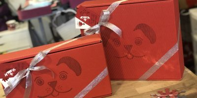 christmas-day-out-vip-dog-gift-box