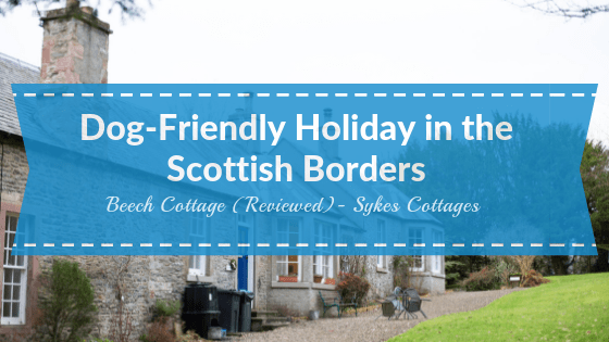 Dog_Friendly_accommodation_scottish_borders_beech_cottage_sykes_cottages