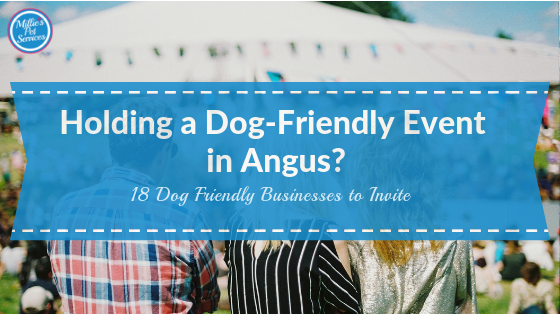 Dog Friendly Businesses to Invite to your Dog Friendly Event in Angus