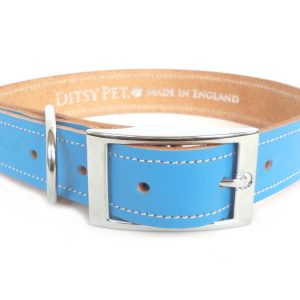 blue-leather-dog-collar-ditsy-buckle