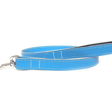 blue-leather-dog-collar-ditsy
