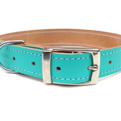 mint-green-leather-dog-collar-buckle-ditsy