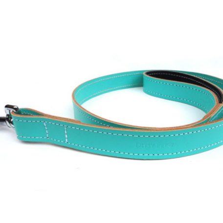 mint-green-leather-dog-lead-ditsy