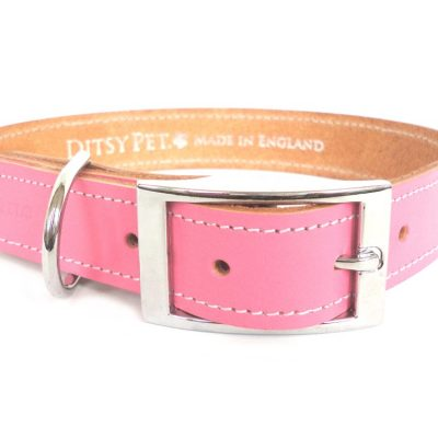 pink-leather-dog-collar-buckle-ditsy