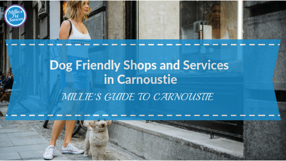 dog-friendly-shops-services-carnoustie-angus