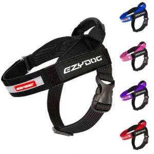 Ezydog-dog-harness-express