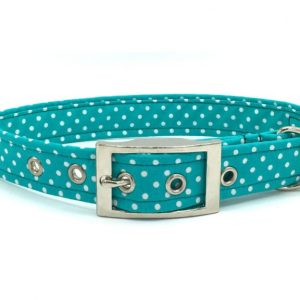 Aqua-Spot-Buckle-Collar-Res-768x576