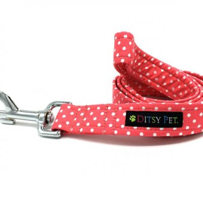 Coral-Spotty-Dog-Lead-Resize-768x576