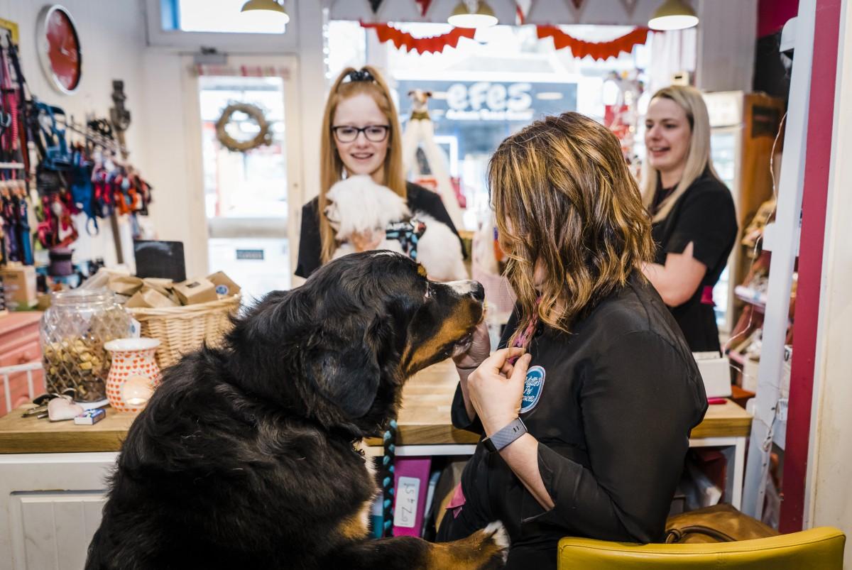 Millies Pet Services-220