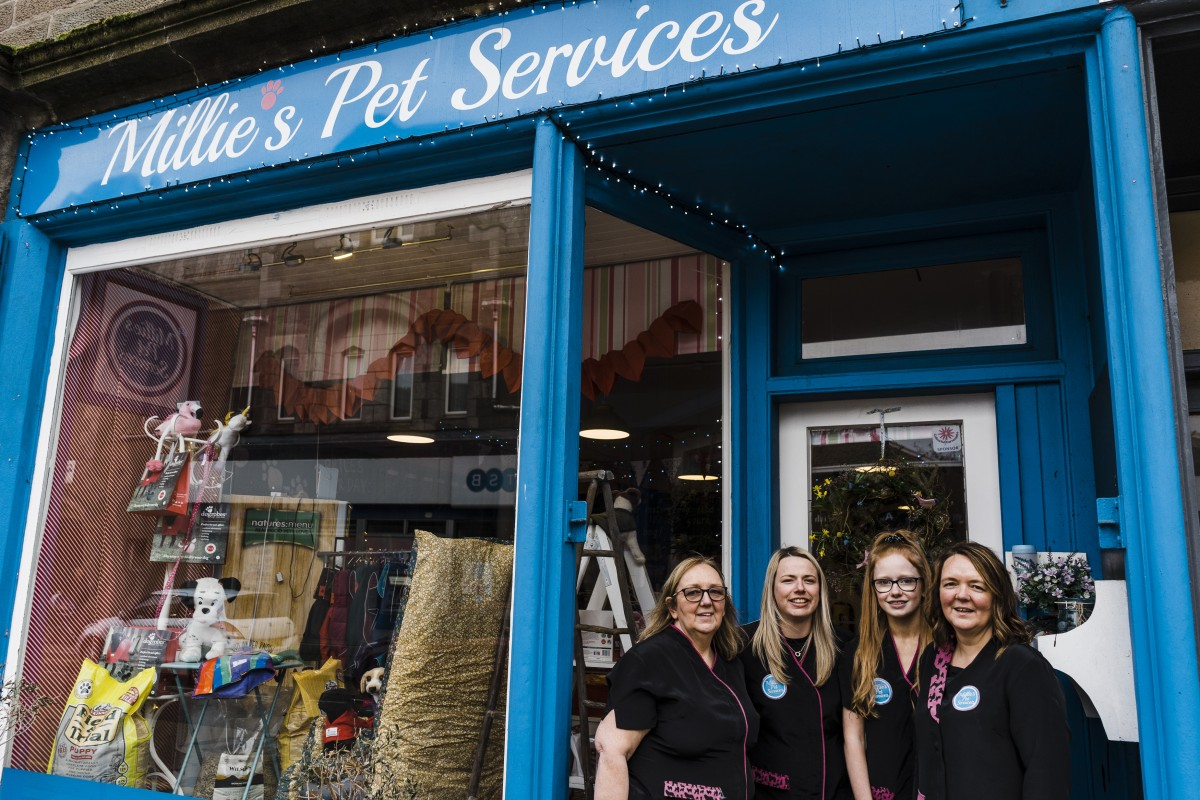Millies Pet Services-dog-groomers-carnoustie