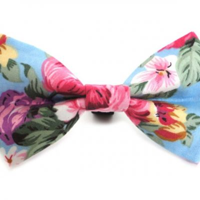 Rose-Dickie-Bow-resize-1-768x576