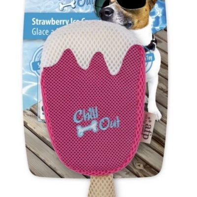 Chill Out Strawberry Ice Cream: Dog Toy
