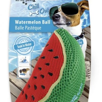 chill-out-watermelon-slice