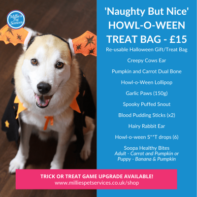 halloween-gift-bag-dogs-trick-treat-puppy