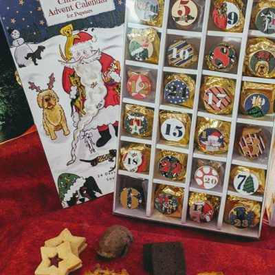 christmas-dog-advent-calender