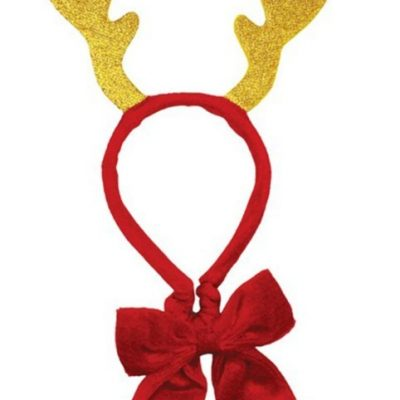 Holly Robin: Sparkly Antlers