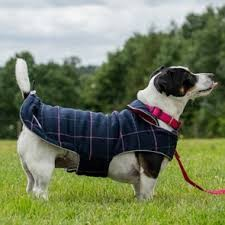 doodlebone-dog-coat-tweed-reversible