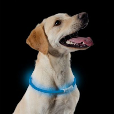 usb-flashing-dog-collar-light2