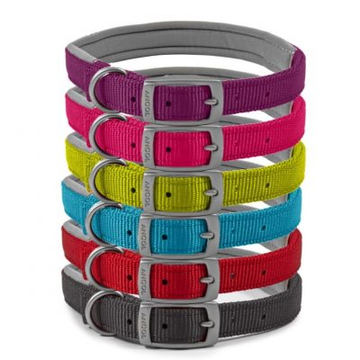Ancol Viva: Padded Dog Collar