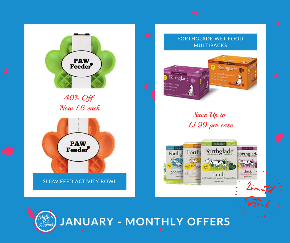 january-dog-owner-monthly-offer