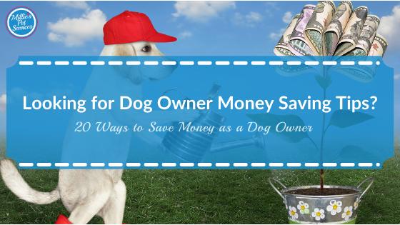 dog-owner-money-saving-tips-20-ways-save-money-dog-owner